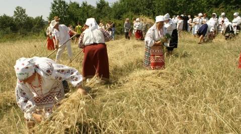 Саудиты рассматривают сельхозпроекты на Украине