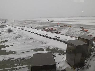 В Шереметьеве из-за снегопада отменено 60 рейсов