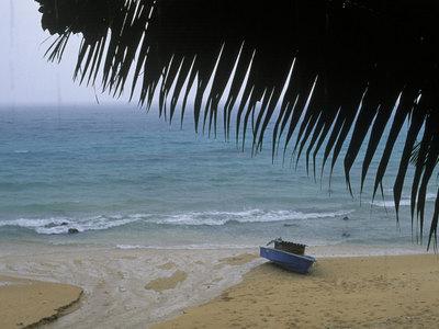 Россияне, чьи останки выбросил океан на пляж Фиджи, погрязли в долгах