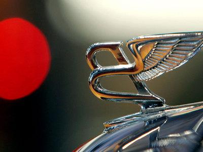 Bentley создаст автомобиль для веганов из медуз и протеина