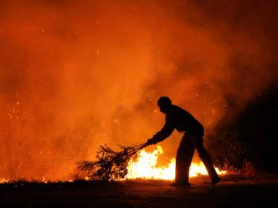 Лесные пожары в Индии: шесть человек погибли