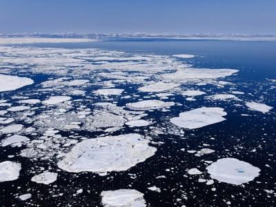 Нефтяные компании отказались от месторождений Аляски