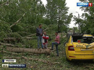 Московский регион приходит в себя после урагана тысячелетия