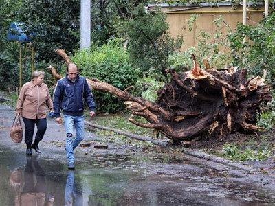 Мощнейшая буря в Одессе повалила деревья, затопила улицы и убила людей