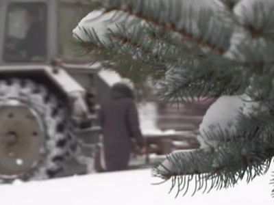 В Кемеровской области из-за аномально сильного снегопада объявлен режим ЧС