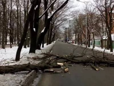Ураган в Ставрополье оставил без воды и света 18 тысяч местных жителей