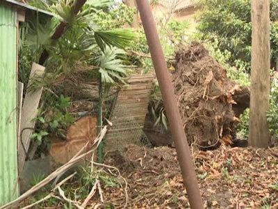 Ураган в Сочи: выжившая поведала, как сложился ее дом