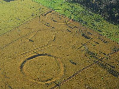 Стоунхендж по-бразильски: амазонские леса тысячи лет хранили гигантские геоглифы