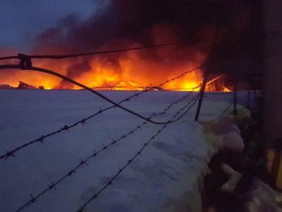 Пожар в Подмосковье: загорелись склады с медикаментами