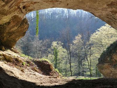 ДНК первобытных людей найдены в пещерной грязи