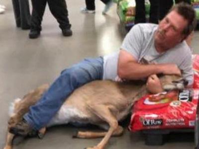 Покупатель поймал в универмаге оленя. Фото