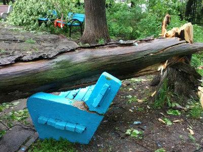 В Москве ликвидируют последствия урагана