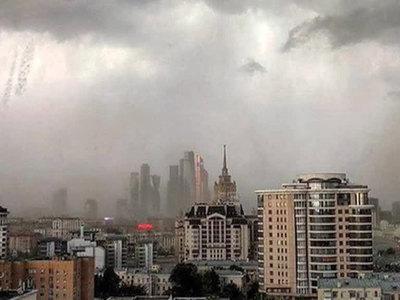 """""""Ингосстрах"""" оценил ущерб от майского урагана"""