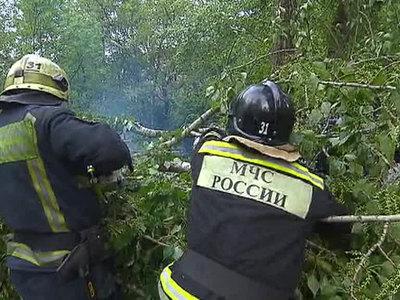 В Центральной России более 30 тысяч человек остаются без света после урагана