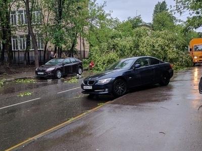 Ураган в столичном регионе: власти подсчитали последствия