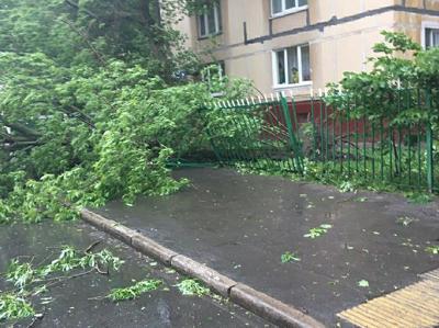 Ураган не повредил стройплощадки в Москве, но повалил кран в Люберцах