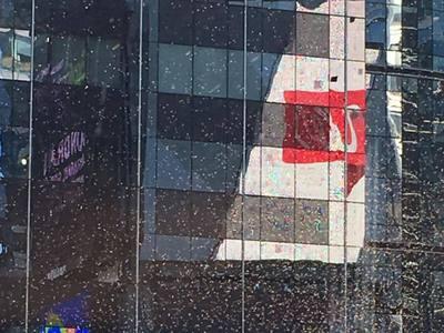 Около 30 тысяч пчел захватили небоскреб на Таймс-сквер