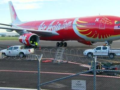 Птицы стали причиной аварийной посадки австралийского самолета