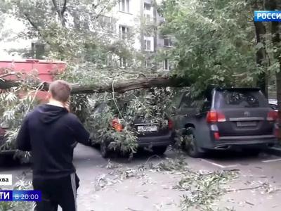 Ветер валил с ног: московский ураган покалечил 15 человек