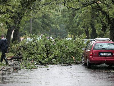 """Число жертв урагана """"Герварт"""" в Европе выросло до 6 человек"""