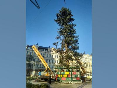На главную елку Украины обрушился поток сарказма