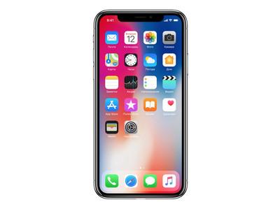 """Тест """"Роскачества"""" выявил слабые стороны iPhone X"""