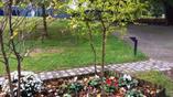 парк святой Барбары в Драме
