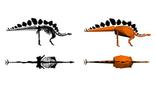 Исслпдователи использовали 3D-модель скелета, чтобы установить массу динозавра на момент смерти
