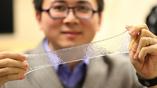 Профессор Сюаньхэ Чжао, один из авторов исследования