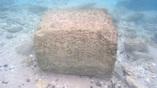Каменный блок, найденный в январе 2016 года в гавани города Дор. Фото: Ehud Arkin Shalev