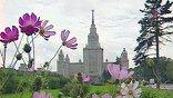 Власти Москвы решили, что Воробьевы горы - неудачное место для концерта