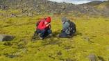 Исследователи изучают мхи Исландии, которые очень напоминают своих предков, покрывавших сушу сотни миллионов лет назад.
