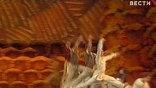 Вообще-то Большой театр в Лондон ехать не хотел. Прошлогодние гастроли в Англии прошли с таким невероятным успехом, что, казалось, повторить его будет невозможно. Топали ногами, чуть ли не стулья ломали, - вспоминает хореограф Михаил Мессерер.