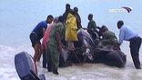 На месте крушение авиалайнера спасатели обнаружены 5 тел погибших пассажиров.