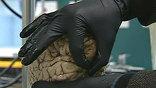 """Хирург справляется с задачей - головные боли Генри больше не мучают, но он теряет возможность запоминать. Совсем. То есть, его мозг удерживает явление или зрительный образ в памяти только 10 минут, по прошествии которых все """"стирает""""."""
