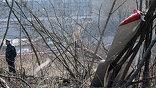 К ликвидации последствий авиакатастрофы привлечены 802 человека и 124 единицы техники (фото EPA)