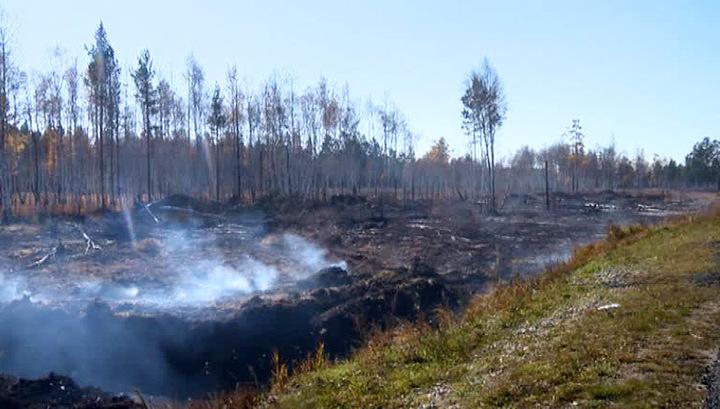Пожары в Забайкалье нанесли сельскому хозяйству ущерб на 600 млн рублей