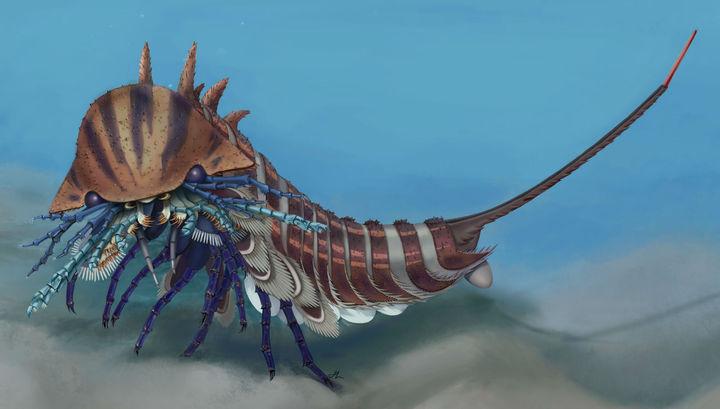 В обиду не даст: к голове древнего морского монстра был прицеплен «складной нож»