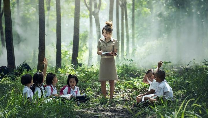 Все в сад: уроки на открытом воздухе повышают продуктивность обучения