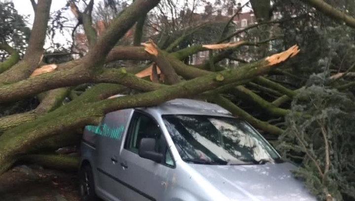 Число жертв стихии в Европе выросло до десяти