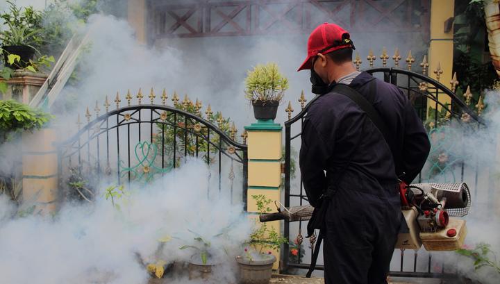В 2018 году во Вьетнаме более 21 тысячи человек заболели лихорадкой Денге