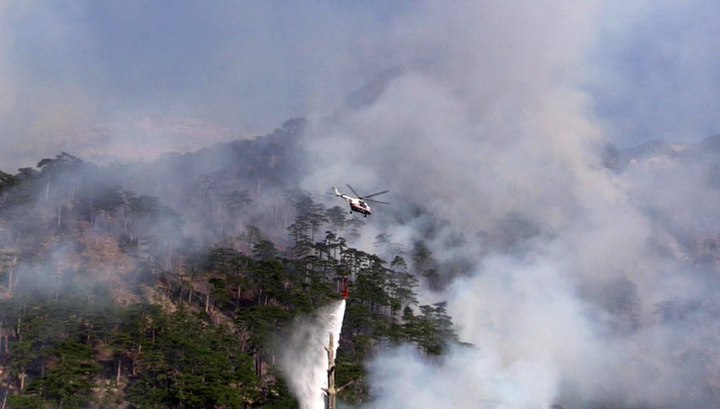 Заповедник в Ялте охватил крупный пожар