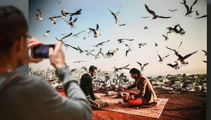 Работы лучших молодых фотографов мира можно увидеть в новогодние каникулы