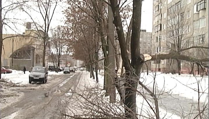 Сотни населенных пунктов Владимирской области из-за урагана сидят в темноте