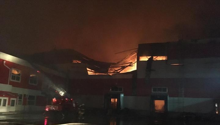 Пожар под Воронежем: открытое горение ликвидировано