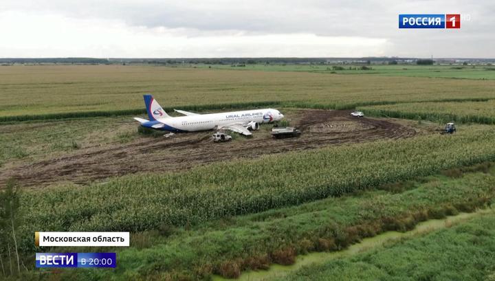 Без кресел, двигателей и крыльев: севший в поле самолет вывезут по частям