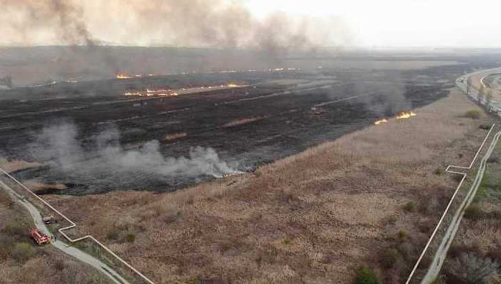 Пожар под Анапой тушат более 100 спасателей