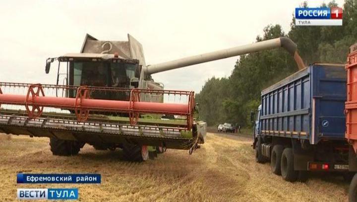 ИКАР повысил прогноз сбора пшеницы в России на 2020 год до 78 миллионов тонн