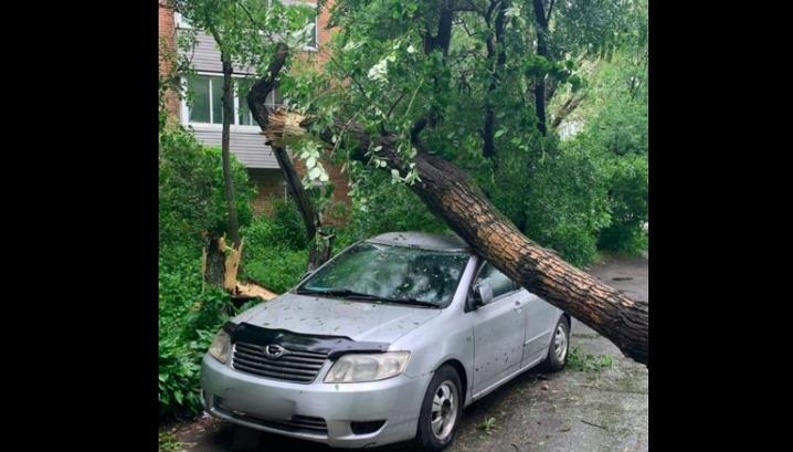Во Владивостоке ликвидируют последствия ночного удара стихии