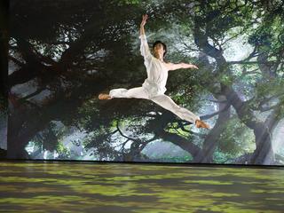 """Кимин Ким. Па-де-де из балета """"Талисман"""". Фото Вадима Шульца"""